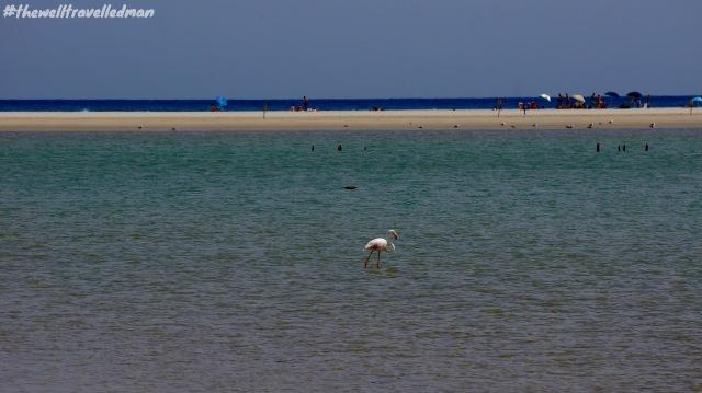 thewelltravelledman sardinia beach holiday