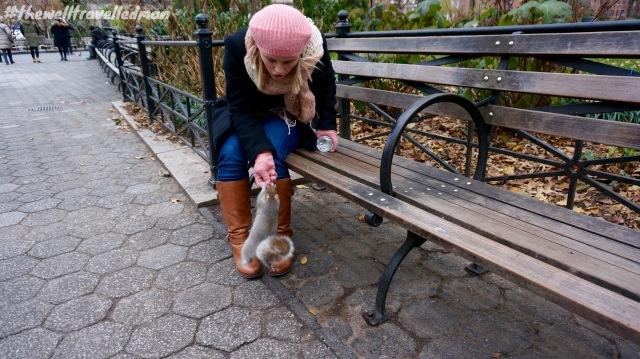 thewelltravelledman bryant park squirrel