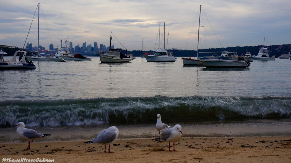 thewelltravelledman watsons bay doyles on the beach