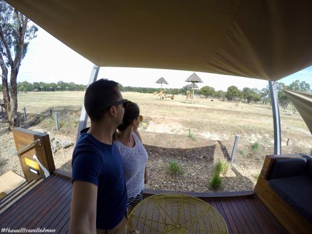 thewelltravelledman taronga western plain zoo zoofari lodge.